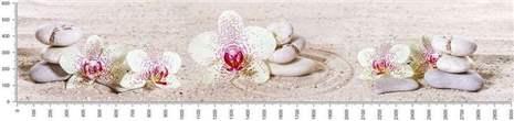 арт.№064 (skin_flora 427 )