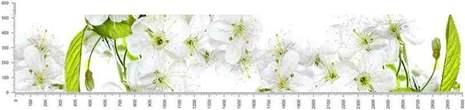 арт.№133 (skin_flora 496 )