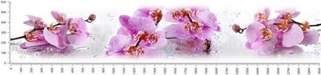 арт.№222 (skin_flora 585 )