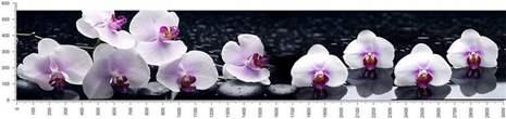 арт.№225 (skin_flora 588 )