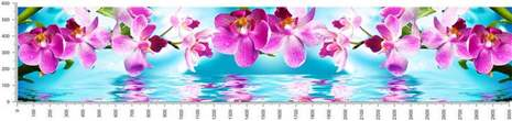 арт.№242 (skin_flora 605 )