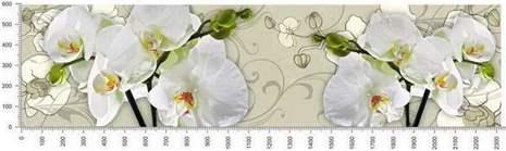 арт.№268 (skin-flora 1)
