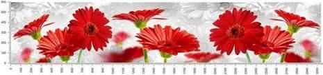 арт.№269 (skin-flora 2)