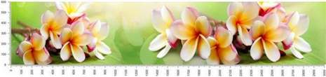 арт.№285 (skin-flora 18)
