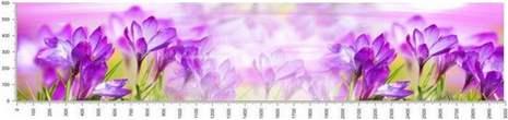 арт.№292 (skin-flora 26)