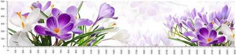 арт.№297 (skin-flora 31)