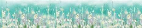 арт.№302 (skin-flora 36)