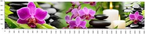 арт.№337 (skin-flora 78)