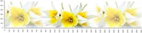 арт.№339 (skin-flora 81)