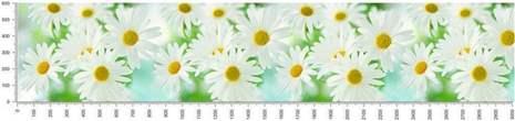 арт.№344 (skin-flora 90)