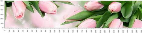 арт.№347 (skin-flora 96)