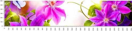 арт.№355 (skin-flora 105)
