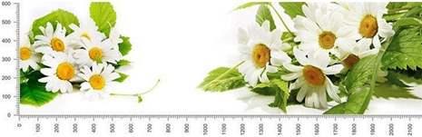 арт.№370 (skin-flora 130)