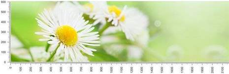 арт.№373 (skin-flora 133)
