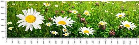 арт.№381 (skin-flora 145)