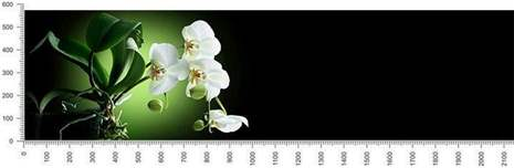 арт.№415 (skin-flora 201)