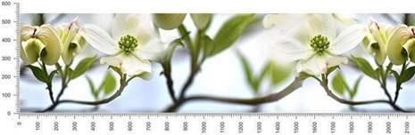 арт.№428 (skin-flora 225)