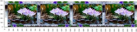 арт.№435 (skin-flora 241)