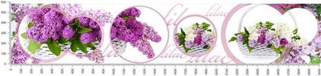 арт.№439 (skin-flora 248)