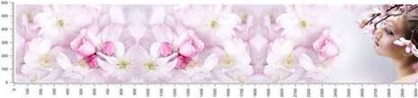 арт.№448 (skin-flora 265)