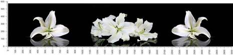 арт.№468 (skin-flora 292)