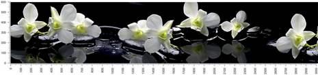 арт.№490 (skin-flora 330)