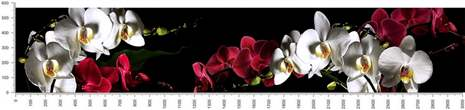 арт.№503 (skin-flora 343)