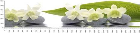 арт.№510 (skin-flora 350)