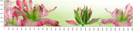 арт.№513 (skin-flora 353)
