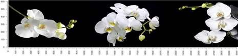 арт.№521 (skin-flora 361)