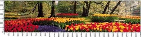арт.№525 (Цветы 2)