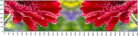 арт.№552 (Цветы 29)