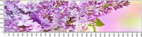 арт.№584 (Цветы 61)