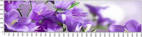 арт.№586 (Цветы 63)