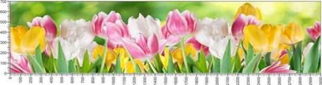 арт.№591 (Цветы 68)