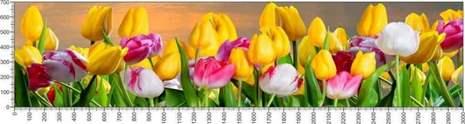 арт.№592 (Цветы 69)