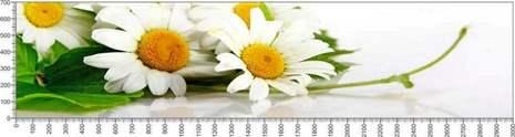 арт.№594 (Цветы 71)