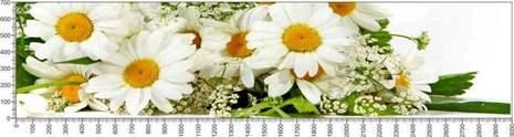 арт.№596 (Цветы 73)