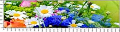 арт.№600 (Цветы 77)