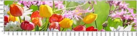 арт.№601 (Цветы 78)