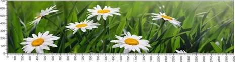 арт.№603 (Цветы 80)