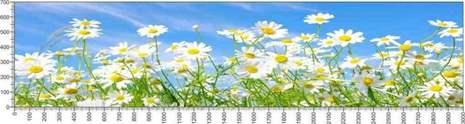 арт.№605 (Цветы 82)