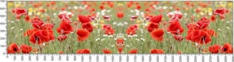 арт.№625 (Цветы 102)