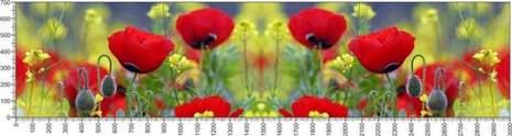 арт.№629 (Цветы 106)