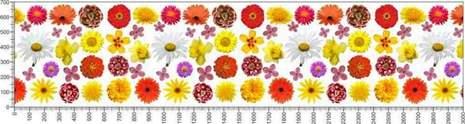 арт.№634 (Цветы 111)