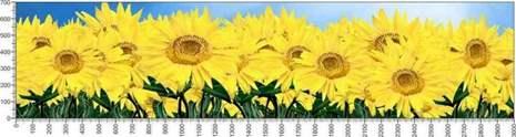 арт.№635 (Цветы 112)