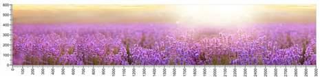 арт.№227 (Фотофартук-Панорамы природы 15)