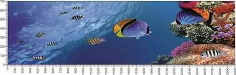 арт.№016 (Подводный мир 16)