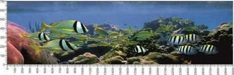 арт.№022 (Подводный мир 22)