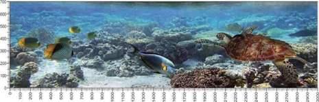 арт.№031 (Подводный мир 31)